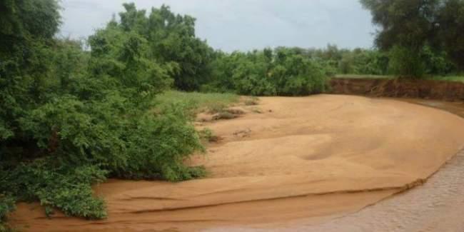 تساقطات مطرية غير مسبوقة تتسبب في تضرر أزيد من مليون شخص جنوب الهند
