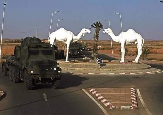 """خبير جزائري يحذّر من تداعيات أي تصعيد عسكري بين المغرب و""""البوليساريو"""""""