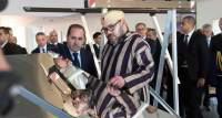المغرب يضمن مكانته ضمن دول متقدمة بفضل مشروع الطاقات المتجددة