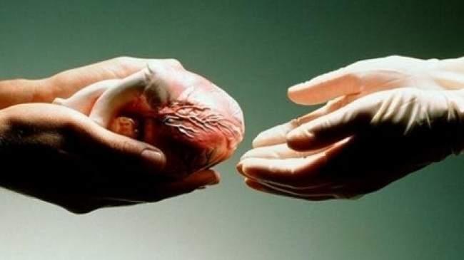 وزارة الصحة تدعو إلى تشجيع ثقافة التبرع بالأعضاء