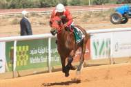 المغرب حاضر في ختام مهرجان منصور بن زايد للخيول العربية بأبو ظبي