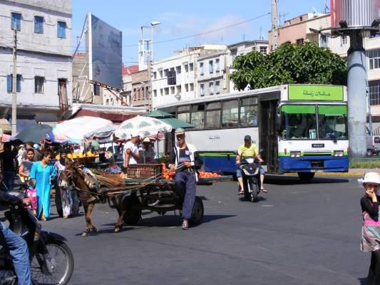 حي بنجدية بالدار البيضاء يتحرّر من العربات المجرورة