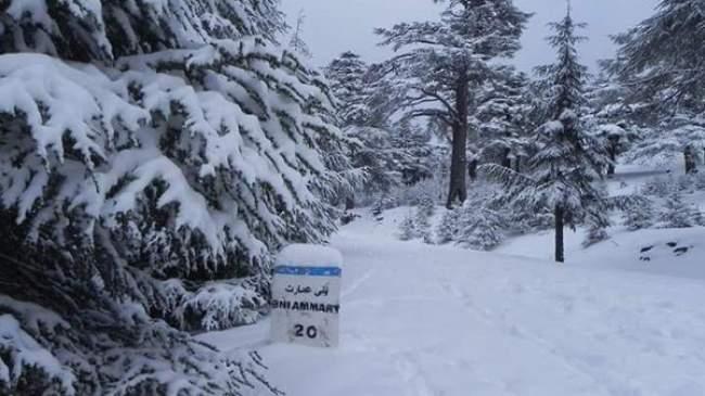أجواء باردة وانخفاض شديد في درجات الحرارة الأحد بهذه المناطق