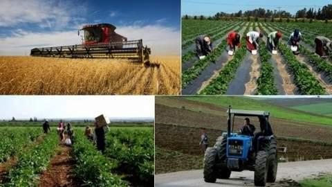 بلاغ هام للمغاربة عن التساقطات المطرية الأخيرة وتوقعات الموسم الفلاحي