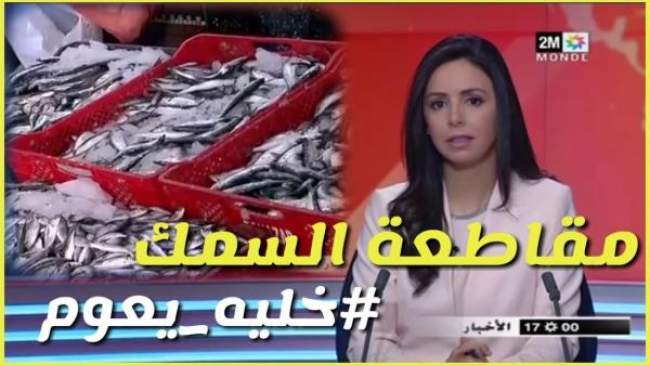 فيديو: حملة #خليه_يعوم تصل القناة الثانية وتجار يرجعون صناديق السردين