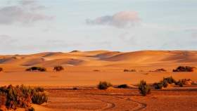 تفاصيل مقترح أوروبي حول الصحراء المغربية
