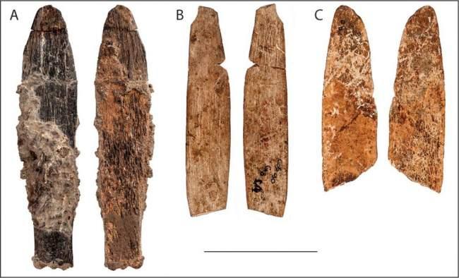 اكتشاف أقدم سكين مصنوع من العظام في المغرب عمره 90 الف سنة