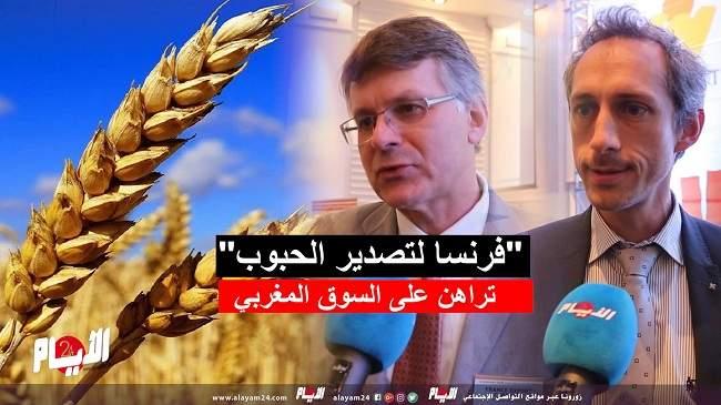"""""""فرنسا لتصدير الحبوب"""" تراهن على السوق المغربي - فيديو"""