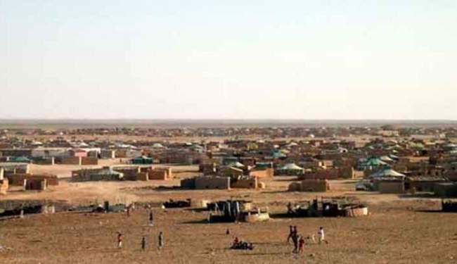 بدعم جزائري..البوليساريو تهيئ جيشا الكترونيا لمهاجمة المغرب