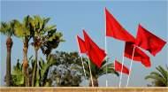 """""""الكابوس الأكبر"""" الذي يخاف ابن سلمان أن ينفذه المغرب!"""