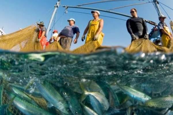 المغرب يبلغ غوتيريس بمستجد عاجل حول اتفاق الصيد وقضية الصحراء!