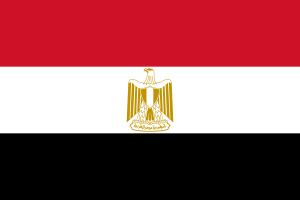 فنان مصري في ذمة الله
