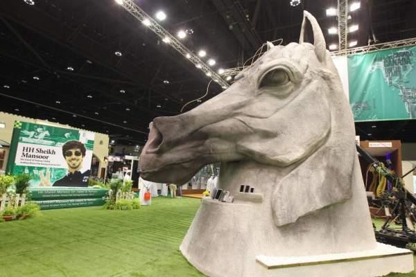 مراكش ...تنظيم الدورة الثالثة ليوم الإمارات العربية المتحدة لسباقات الخيول العربية