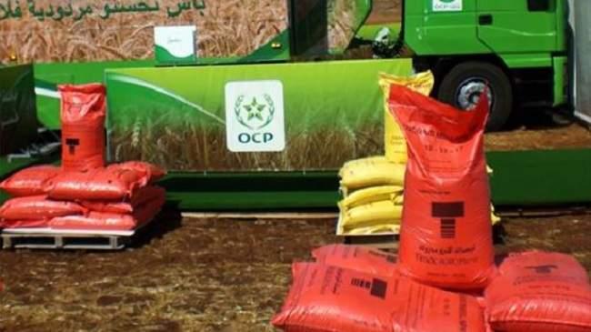 الفوسفاط المغربي ينتصر في كينيا