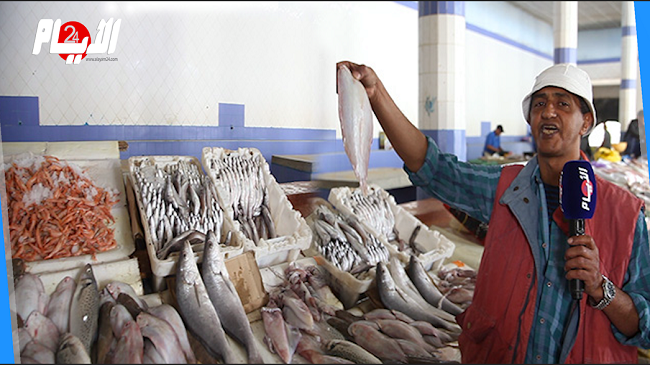 أسعار السمك تلتهب في رمضان.. التجار يكشفون السبب