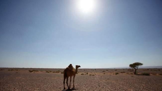 انتبهوا..استمرار الأجواء الحارة في هذه المناطق المغربية