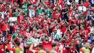 الأمن المصري يعتقل مشجعا مغربيا .. إليكم الخطأ الذي ارتكبه