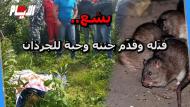 أكلَته الجرذان.. القصة الكاملة لقتل مغربي بإسبانيا بعد طعنه غدرا وتجريده من ملابسه