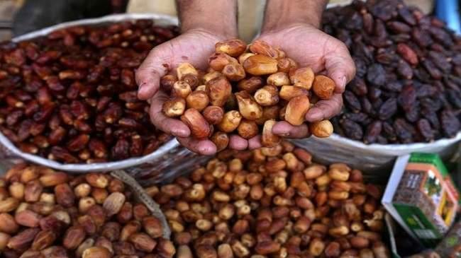 صادرات التمور التونسية تحققا رقما غير مسبوق والمغرب زبونها الأول