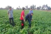 """المغرب يتمكن من تحقيق """"مستوى جيد"""" من تغطية احتياجاته الغذائية"""